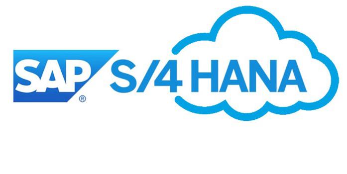 A Ajinomoto Adotou o SAP S/4 hana